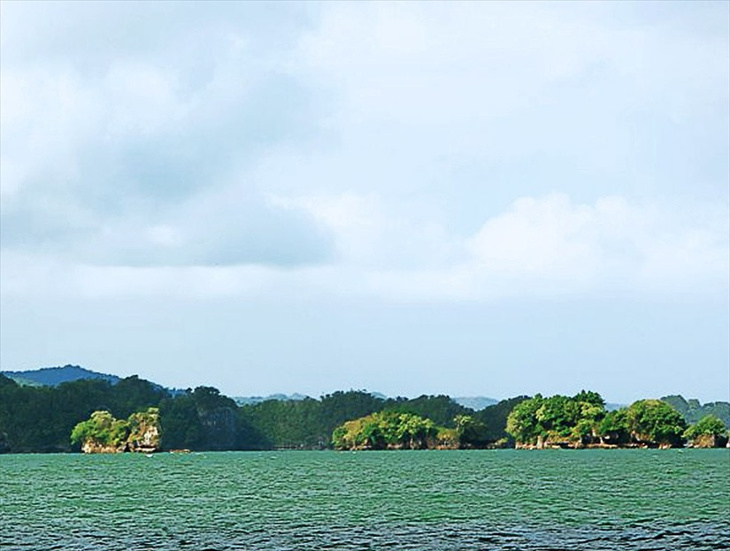 Los Haitises National Park Tour & Excursion - Caves & Mangroves Tour in Samana Dominican Republic.