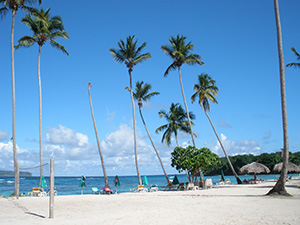 Beach Excursion for your Cruise Ship in Samana Dominican Republic.