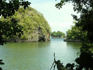 Activities in Samana DR - Los Haitises National Park Tours in Samana Dominican Republic. Los Haitises Park Excursions in Samana Bay Dominican Republic.